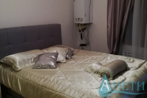 For rent One-room apartment For rent  in Sofia